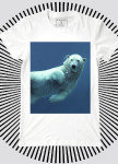 Изображение Футболка мужская белая Polar Bear YAPPI
